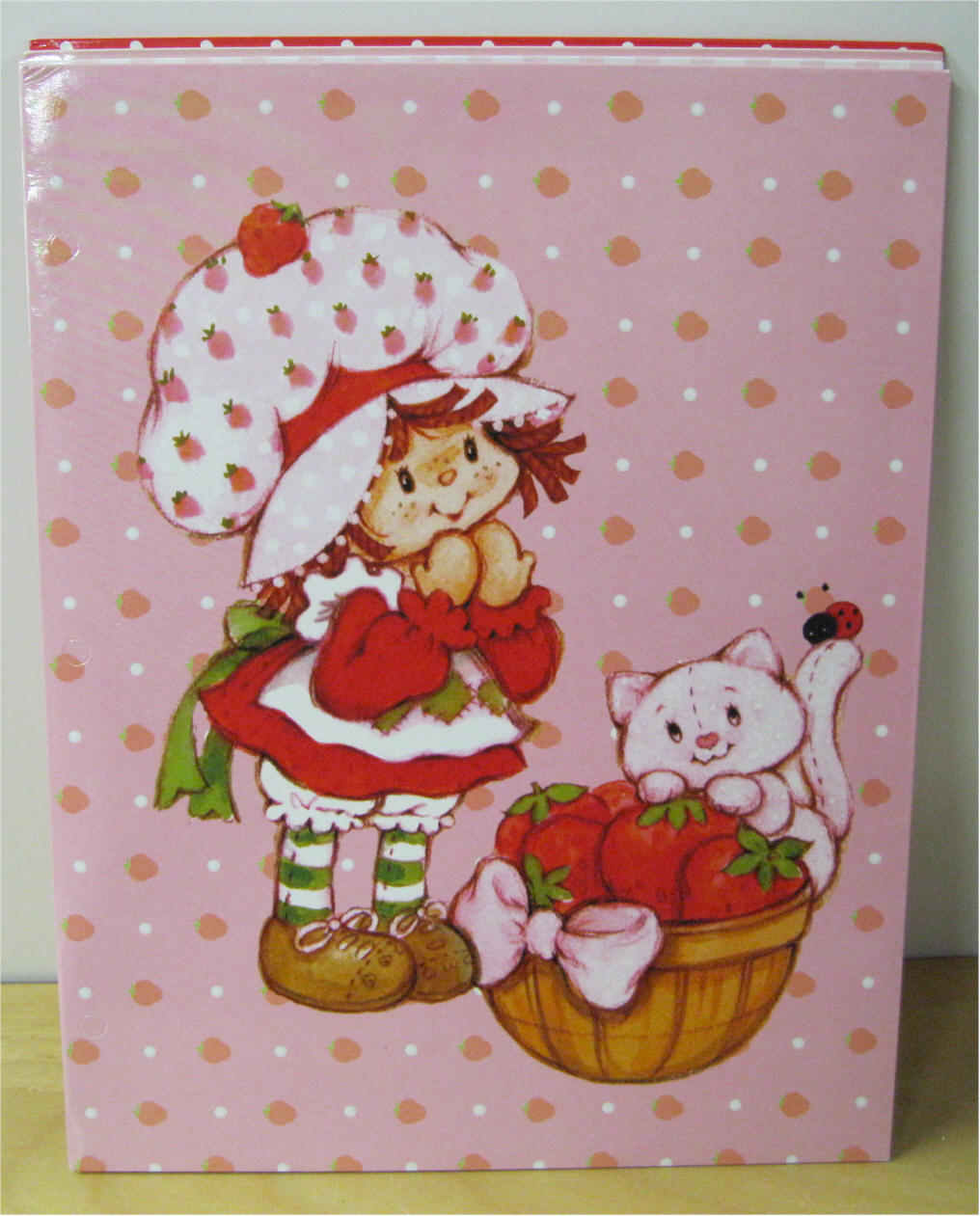 STRAWBERRY SHORTCAKE FOLDERS AND BINDERS